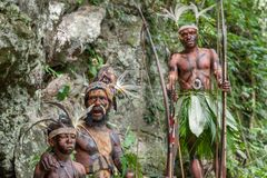Folket av en Papuanstam av Yafi i traditionell kläder, prydnader och färgläggning Royaltyfri Foto