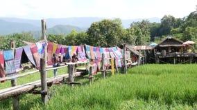Folket besöker och drinkkaffe med den gröna terrassrisfältet på detTai-Lue Café Pua området, Nan Thailand Kafé dekorerat ställe stock video