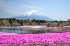 Folket från Tokyo och andra städer kommer till Mt Fuji och tycker om th Arkivfoton