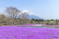 Folket från Tokyo och andra städer kommer till Mt Fuji och tycker om th Royaltyfria Foton