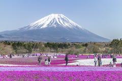 Folket från Tokyo och andra städer kommer till Mt Fuji och tycker om th Arkivbild