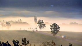 Folket går att arbeta i bilar på vägen på soluppgång i dimman