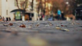 Folket går i hösten pedestrianized gatan lager videofilmer