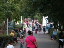 Folket går i parkera Arkivbild