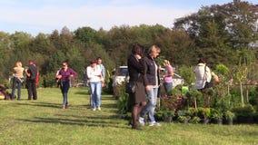 Folket går i trädgårds-mässa för växtblommaplanta stock video