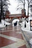 Folket går i Tsaritsyno parkerar i Moskva i vinter Royaltyfri Bild