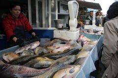 """Folket köper den nya fisken på en smutsig havs- marknad utanför i Sofia, Bulgarien†""""december 5, 2008 Arkivfoto"""