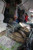 """Folket köper den nya fisken på en smutsig havs- marknad utanför i Sofia, Bulgarien†""""december 5, 2008 Royaltyfria Foton"""
