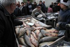 """Folket köper den nya fisken på en smutsig havs- marknad utanför i Sofia, Bulgarien†""""december 5, 2008 Arkivbilder"""