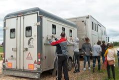 Folket laddar hästar in i skåpbilen för trans. Fotografering för Bildbyråer