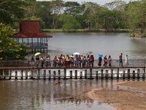 Folket matar flodhästar, Khao Kheow den öppna zoo arkivfoton