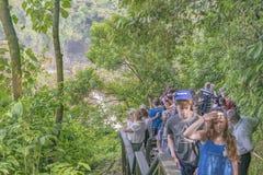 Folket på Iguazu parkerar i Brasilien Royaltyfri Fotografi