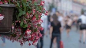 Folket promenerar gatan, ut ur fokus En varm sommardag stock video