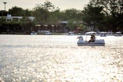 Folket rider andfartyget på offentligt parkerar kända Suan Luang Rama IX på solnedgångtid Bangkok, Thailan arkivfoto