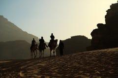 Folket rider på kamel i den Wadi Rum öknen i Jordanien arkivbilder