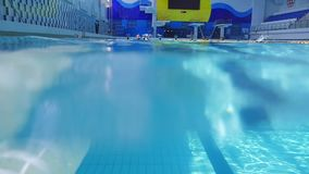 Folket simmar i pölen stock video