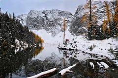 Folket som fotvandrar i nord, applåderar nationalparken royaltyfria bilder