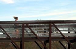 Folket som joggar på bron i buffelflodarmen, parkerar, Houston, Texas arkivbilder