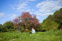 Folket som kopplar av i parkera på en bakgrund av äpplet, blomstrar Royaltyfri Fotografi