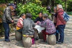Folket som spelar kort parkerar in, det shanghai porslinet Royaltyfri Bild