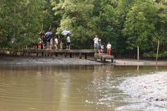 Folket som står på bron, väntar fartyget för att resa Arkivbild