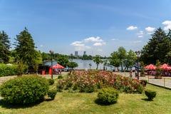 Folket som tar en gå på sommardag i offentliga Herastrau, parkerar Arkivfoton