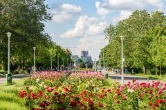 Folket som tar en gå på sommardag i offentliga ungdomar, parkerar (Parcul Tineretului) Royaltyfri Fotografi
