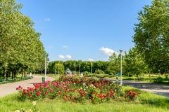 Folket som tar en gå på sommardag i offentliga ungdomar, parkerar (Parcul Tineretului) Arkivbilder