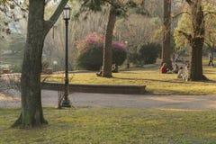 Folket som tycker om dagen på Parque Rodo, parkerar i Montevideo royaltyfri fotografi