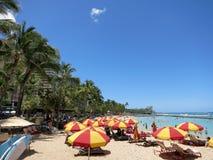 Folket spelar i det skyddade vattnet och hänger ut på stranden in royaltyfria foton