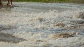 Folket står med kal fot i vattnet på stranden stock video