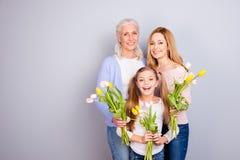 Folket tillbringar veckoslutet mater för föräldraskap för moderskap för glädjefritidlivsstilen Royaltyfria Bilder