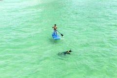 Folket tycker om står upp skoveln som surfar och dyker i havet Royaltyfri Fotografi