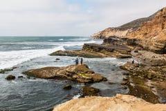 Folket undersöker tidvattentips i Point Loma, Kalifornien royaltyfri bild