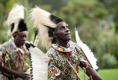 Folket utför afrikansk traditionell folkdans Arkivbilder