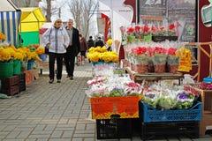 Folket väljer blommor på marknaden för den internationella dagen för kvinna` s på mars 8 i Volgograd Royaltyfria Foton
