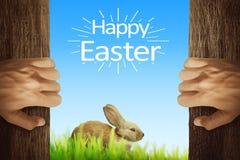 Folkhand som öppnar trädörren med den easter kaninen och lycklig öst Arkivfoto