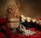 Folklor στοκ φωτογραφίες