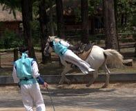 Folklore show, Suwon, Korean Republic Stock Images