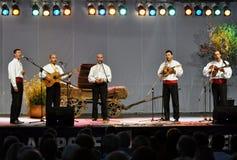 Folklorekonzert stockbilder
