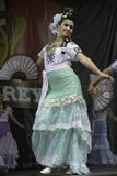 Folklorico dansare royaltyfria foton