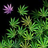 Folkmassa av cannabissidor på svart bakgrund stock illustrationer