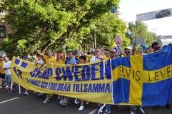 Folkmassa av en Sverige fan Royaltyfri Bild