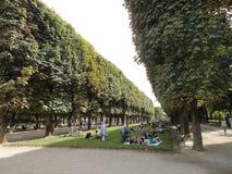 Folkmassa av folk med träd och busken arkivfoton