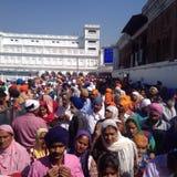 Folkmassa av indiskt sikhfolk i den guld- templet, amritsar, Indien Arkivfoton
