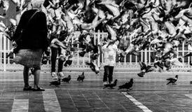 Folkmassa på Cinarcik stadmitt - Turkiet Arkivfoton