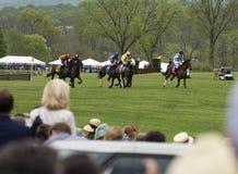 Folkmassaklockahästar kör Virginia Gold Cup Royaltyfri Fotografi