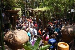 Folkmassaline up på den Disney dragningen royaltyfri foto