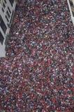 Folkmassan firar på Chicago Blackhawks ståtar Royaltyfri Fotografi