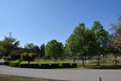 folkträdgård och himmelmoln och byggnad Royaltyfria Foton